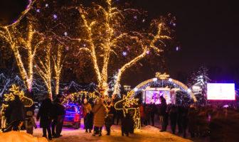Святкування, відкриття новорічної, різдвяної ялинки