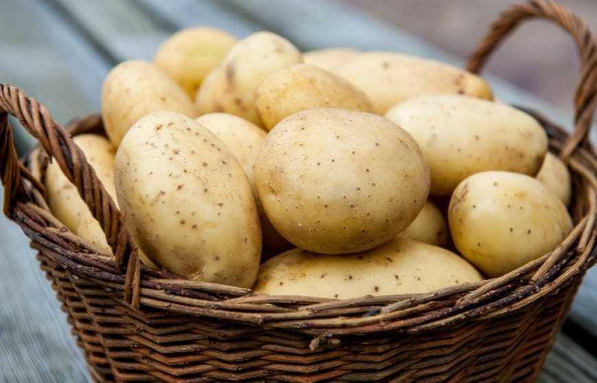 ціни на картоплю