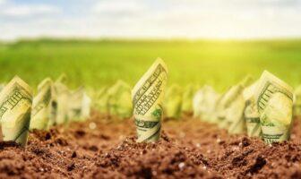земля, долари, гроші