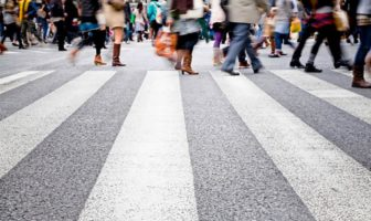 зебра дорога пішошід