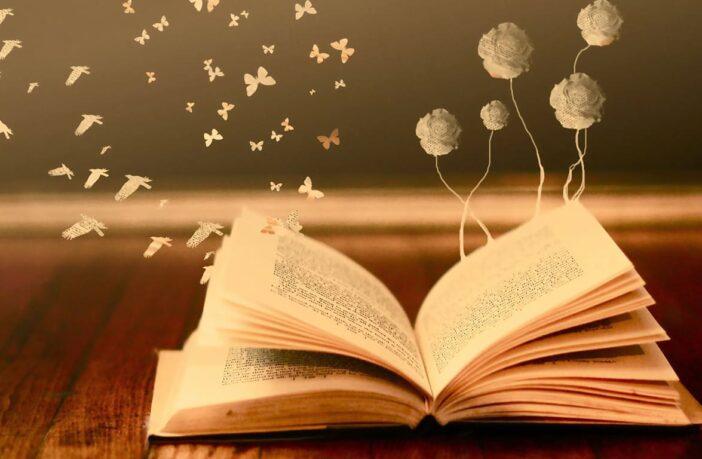 книга, книжка