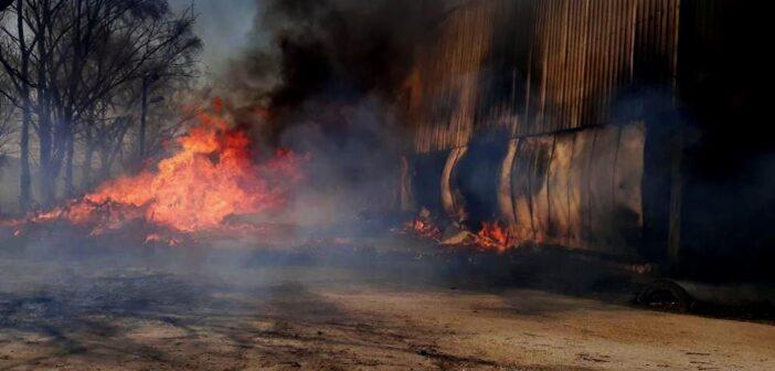 На Торгмаші згоріло овочесховище. ФОТО, ВІДЕО