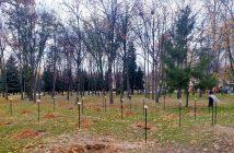 Алея пам'яті загиблим жінкам у російсько-українській війні