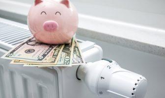 Свиня тримає долари на барареї
