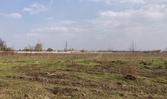 Листівник, поле, РПЦ, радіопередавальний, цвинтар