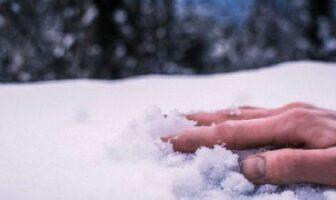помер в снігу