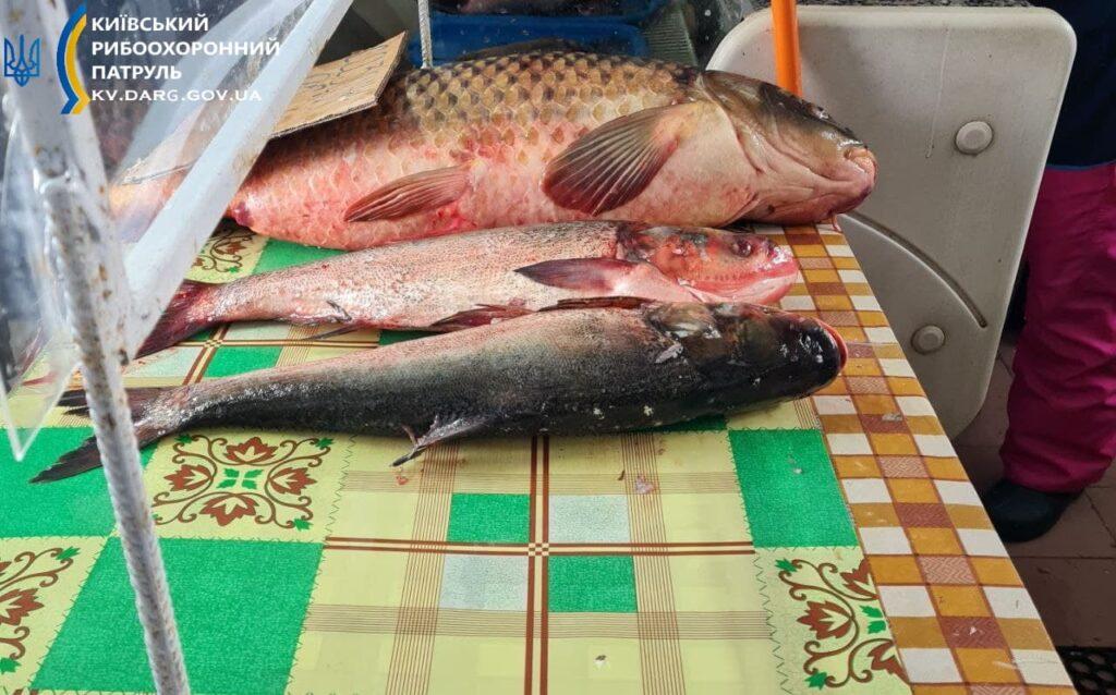 риба на базарі, ринку
