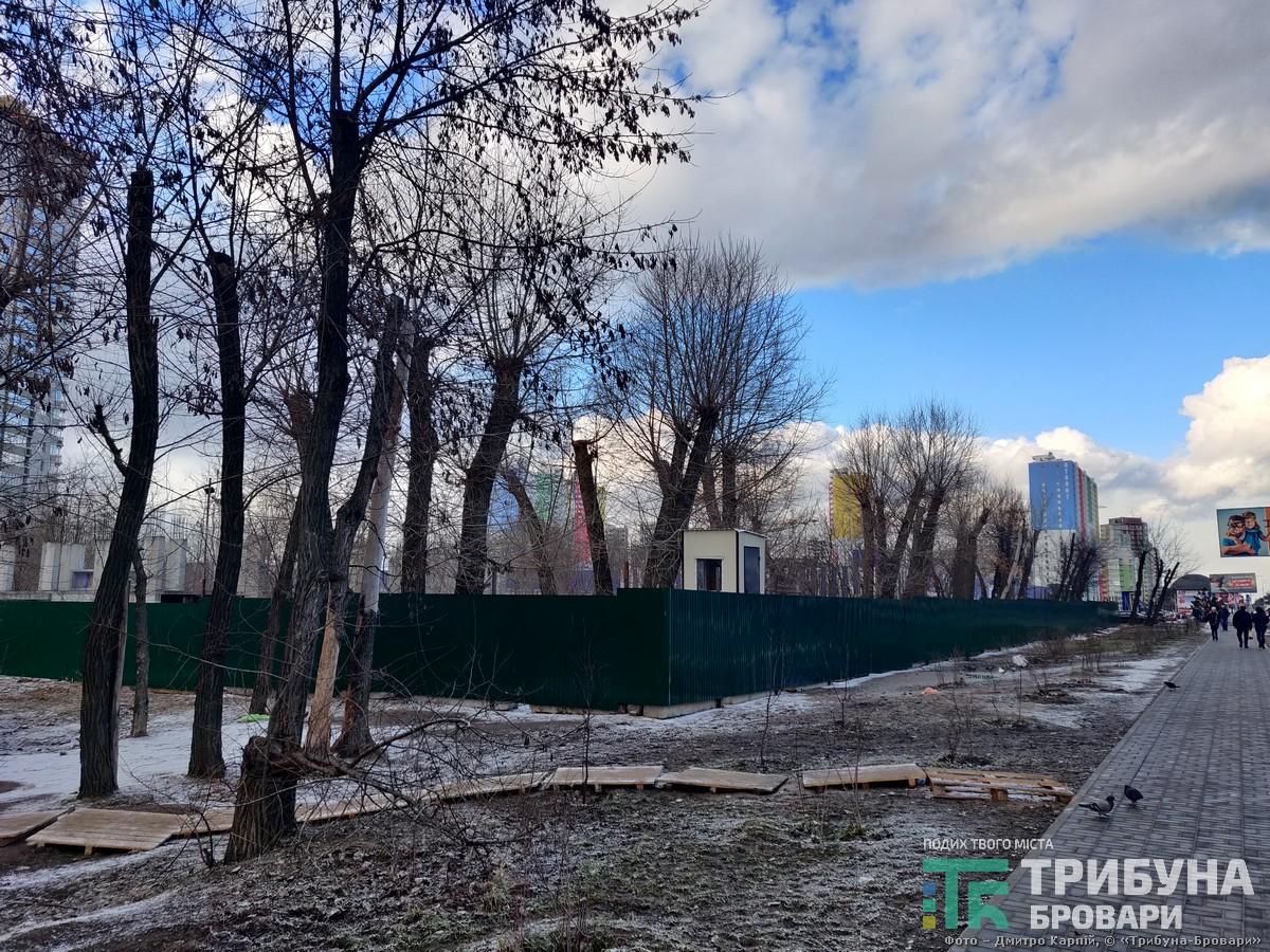 обрубані дерева за парканом