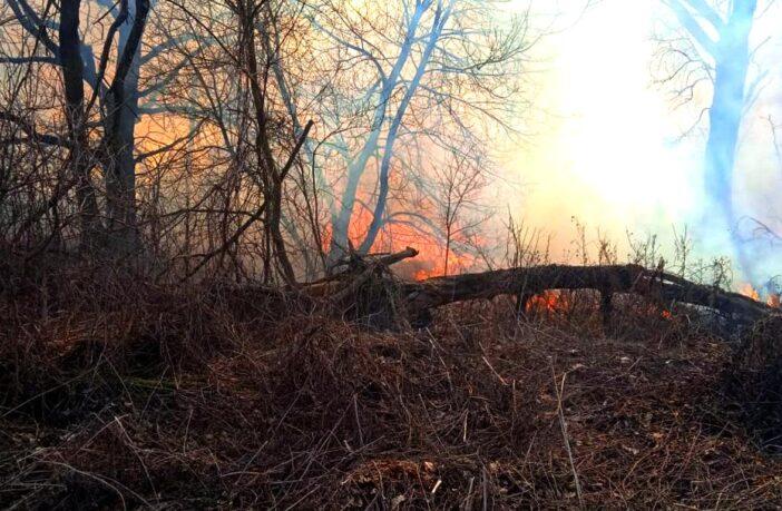 Пожежа трав'яного настилу 27-28 березня 2021, фото - ДСНС