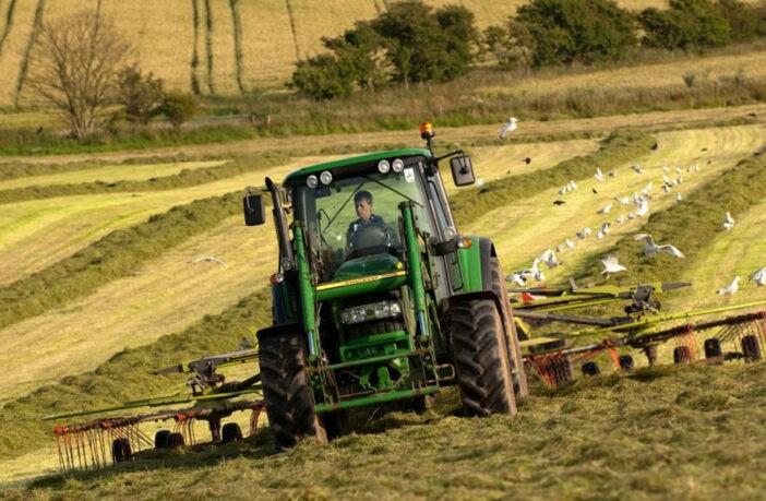 Фермерство, фото - Agromedia