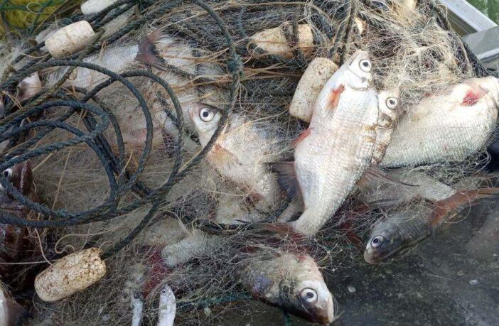 рибоохоронний патруль сітки