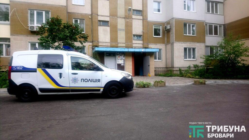 Нищення вазонів та порушення паркування, Незалежності, 10-Б, фото - Захар