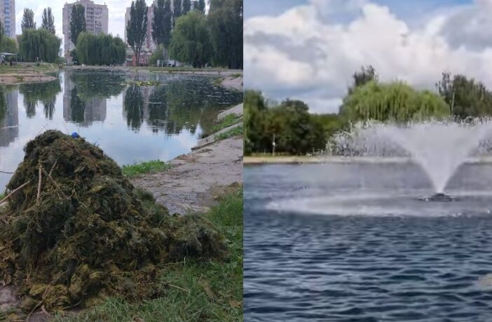 """озеро в парку """"Перемога"""""""