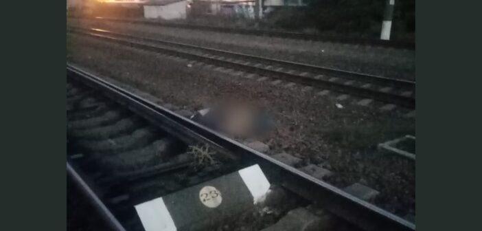 Поїзд на смерть збив пенсіонера в Шевченковому – поліція