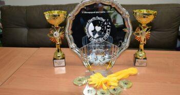 У Броварах відбувся фестиваль-конкурс «Inna-Brovary» на підтримку онкохворих